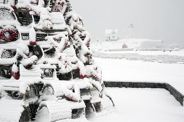 Snow covered lobster trap holiday tree