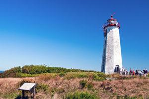 Faulkners Island Tour