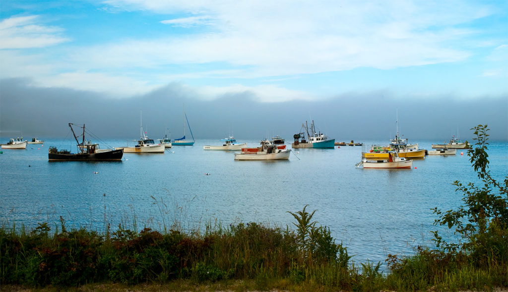 Fog lifts by fishing boats on Prospect Harbor.
