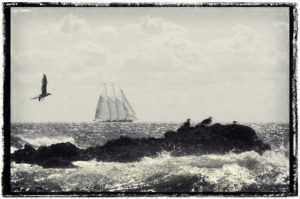 Schooner in distance in southern maine.